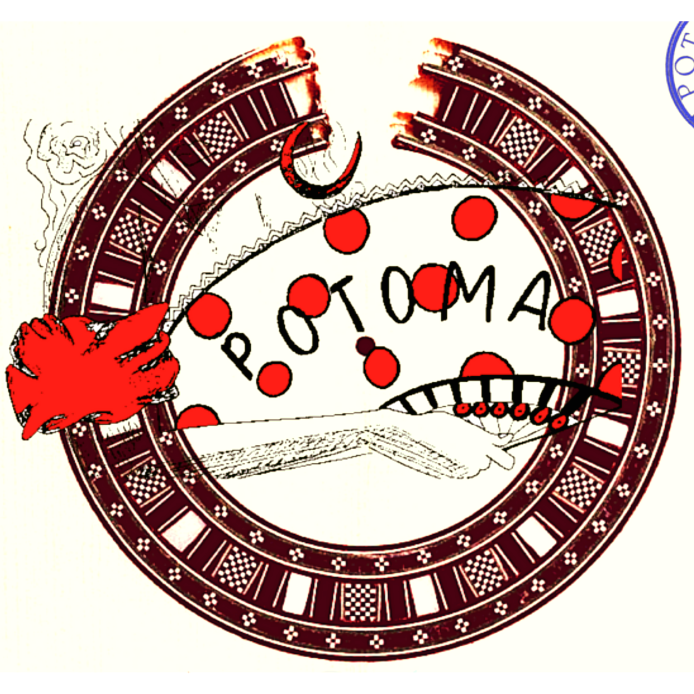 Potoma y la Timba flamenca